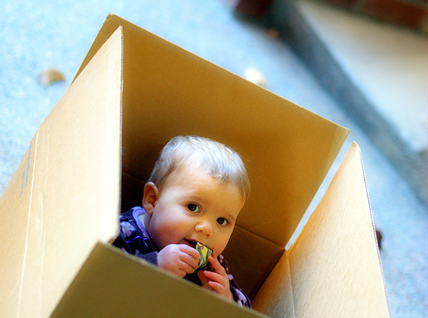 Baby in Moving Box